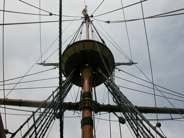mayflower-558818_640